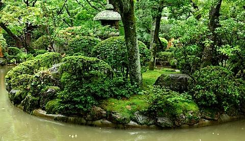 Bonzai garden at Kiyomizudera Temple
