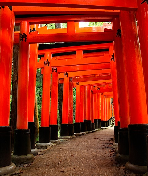 Gates at Fushimi Inari Shrine